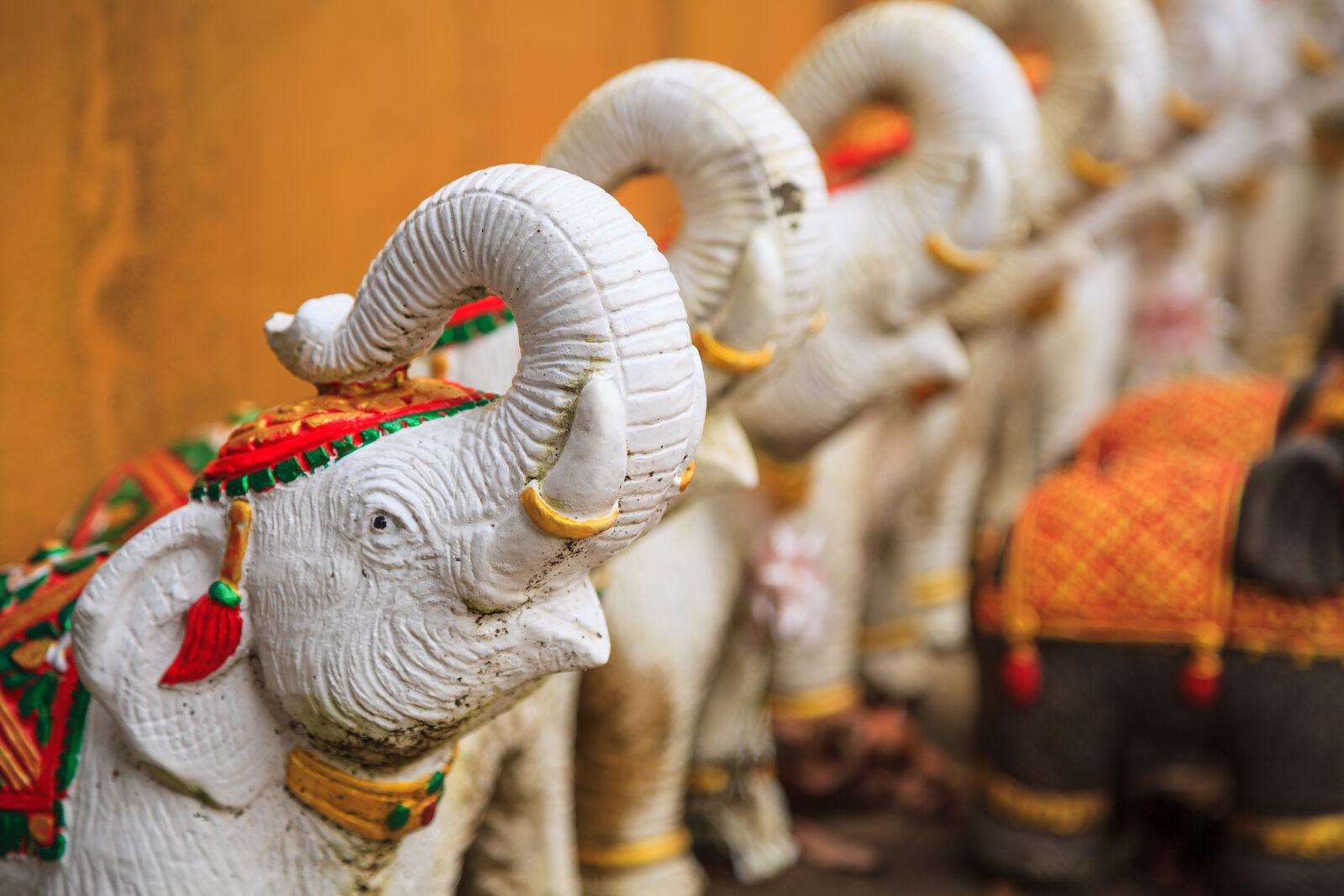 слон таиланд