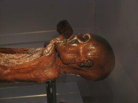 Тирольский ледяной человек (Этци) мумия