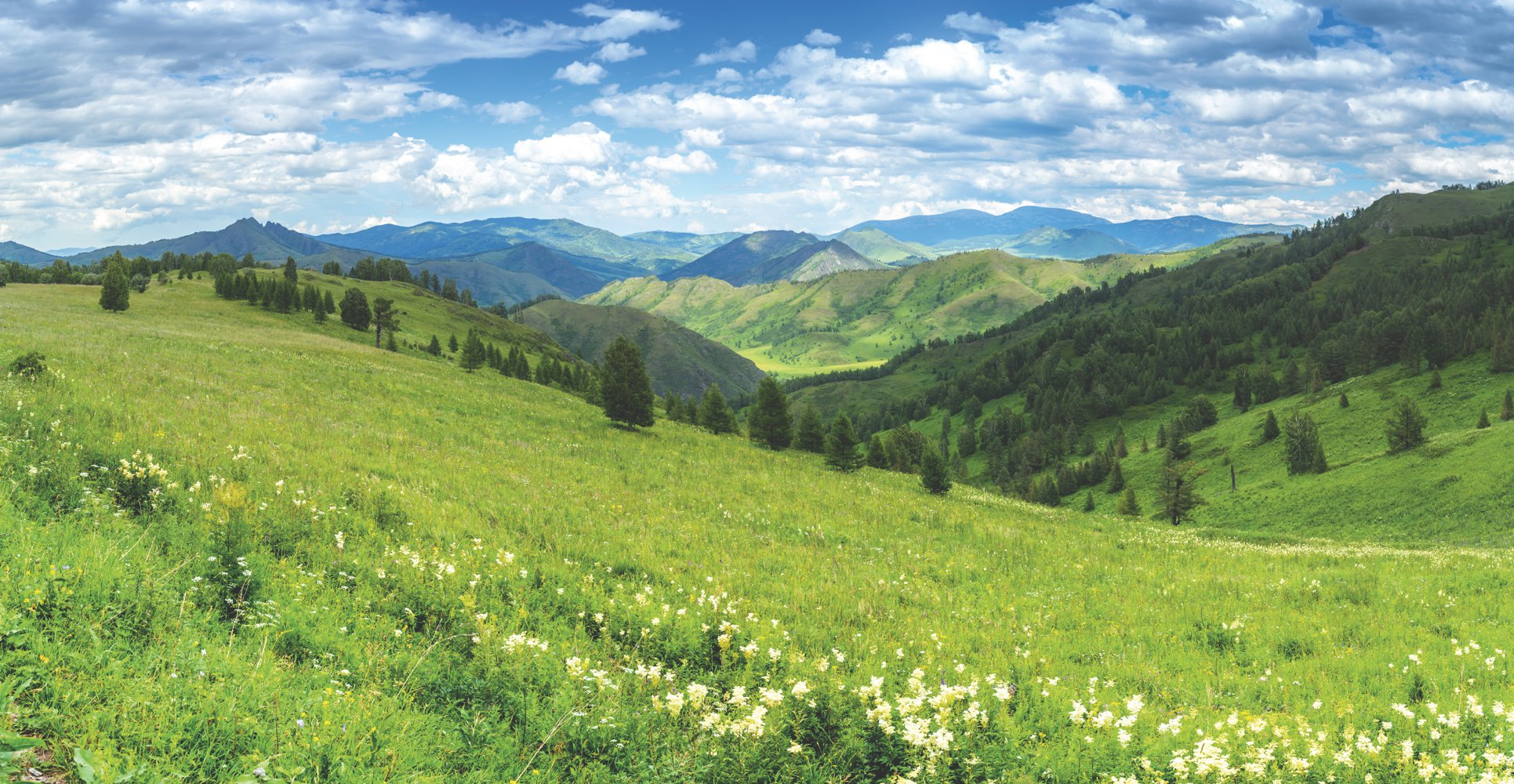 Чарышский район, Алтайский край
