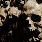 череп скелет