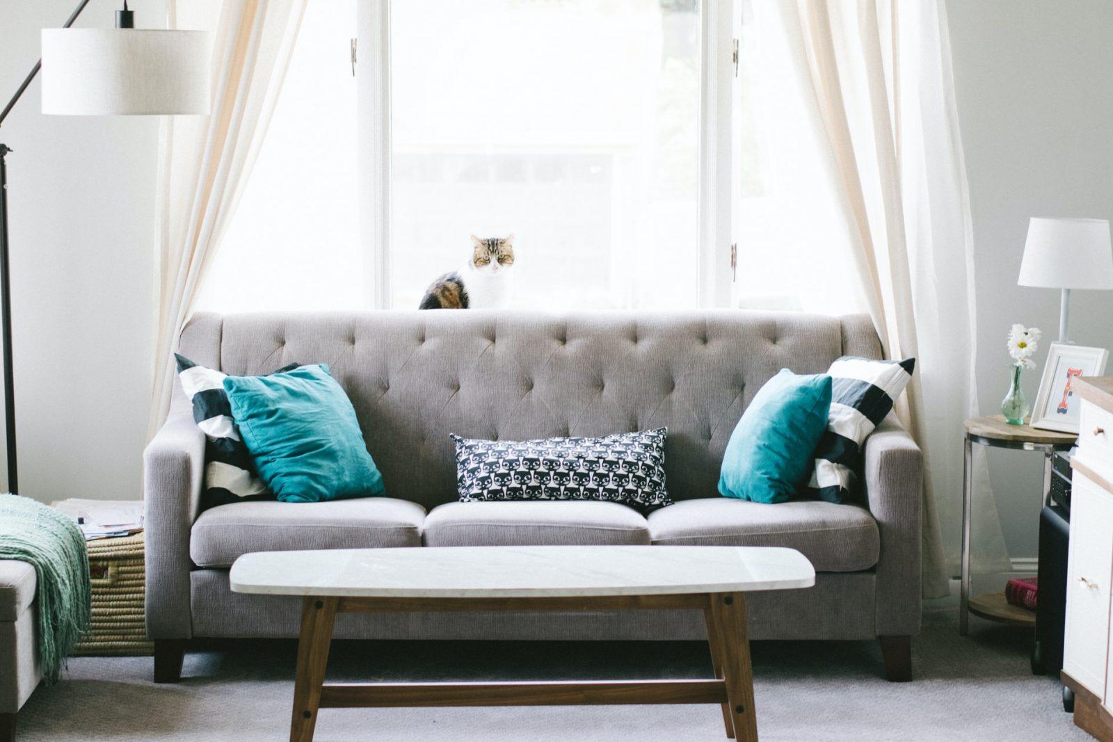 квартира комната диван